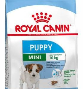 Royal Canin Mini Puppy 4 kg Dry New Born Dog Food